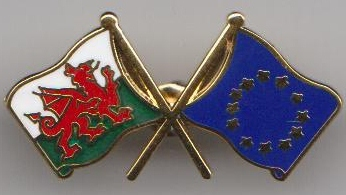 European-union-and-wales-friendship-flag-badge-t491--3096-p